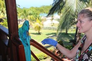 Martina Hirschmeier versucht sich dem schüchternen Papagei zu nähern.