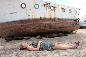Die Reporterin Frau Schlaumeier genießt die Ruhe bei den schlafenden Seehunden.