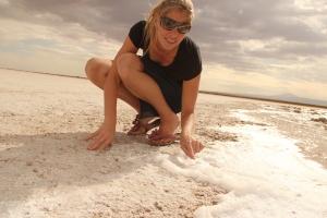 Ganz kleine Fliegen befinden sich im Schaum des Salzsees und dienen den Vögel zur Nahrung.