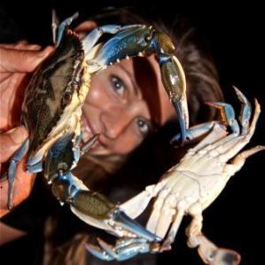 Martina Hirschmeier mit einem frisch gefangenen blauen Taschenkrebs.